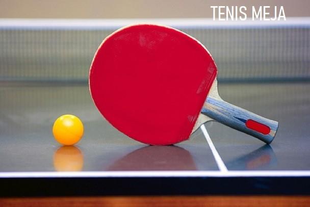 Tenis Meja / Ping Pong